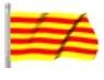 2014 Copa Catalana Olot Maig