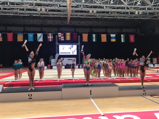 2017 Campionat d'Espanya